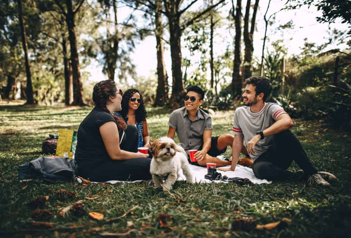Friends in park having a picnic
