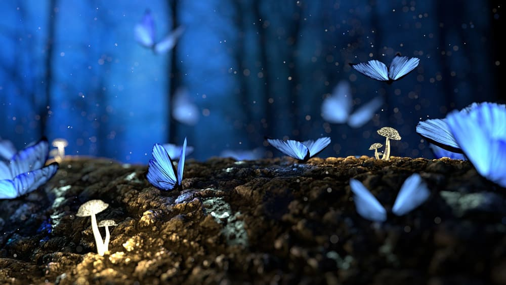 blue-butterfly-in-dreams