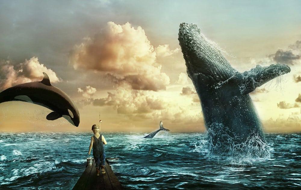 sea-whale-scene