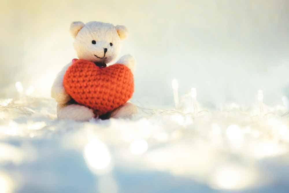 teddy bear holding heart on lap