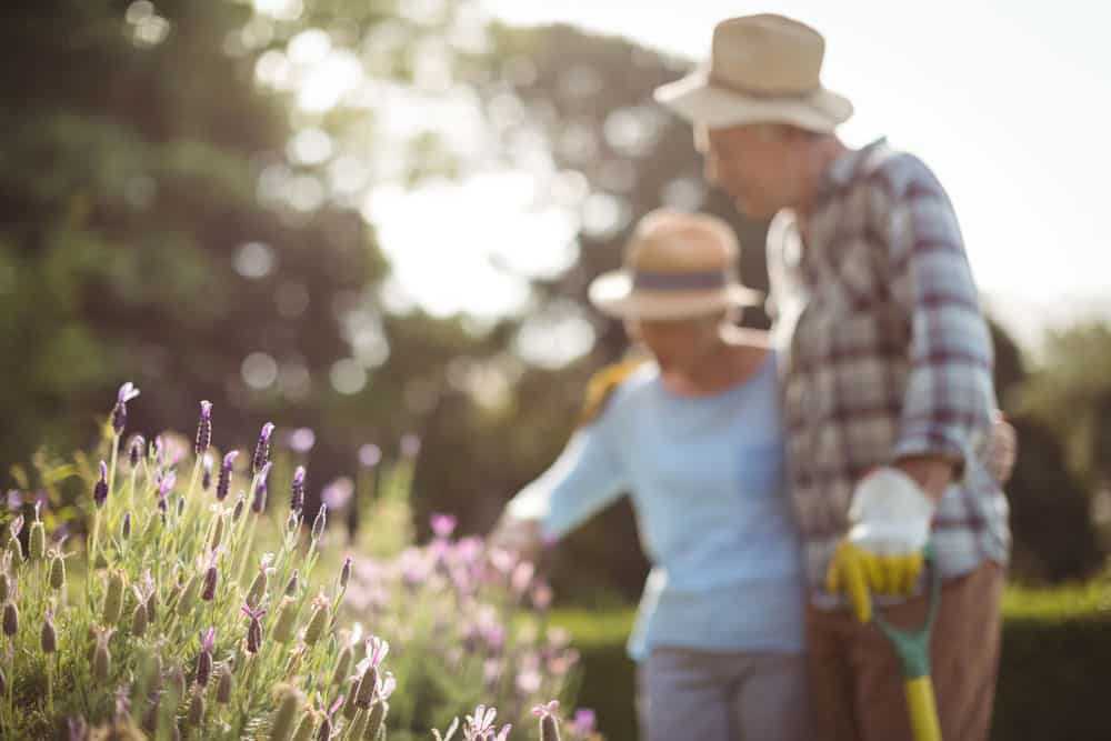senior-couple-gardening