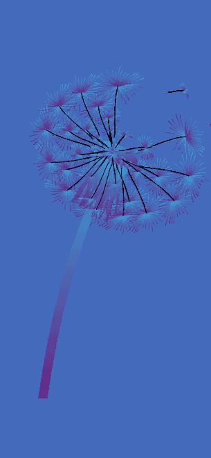 purple-dandelion-logo