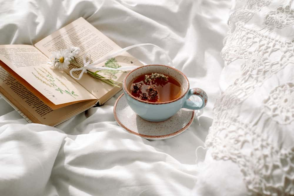 openwork-lace-cotton-white-blanket-book-botany-mug-with-natural-herbal-tea-made-from-mint-summer-daisy-flowers-morning-breakfast-bed-provence-retro-style-clean-cosiness-freshness