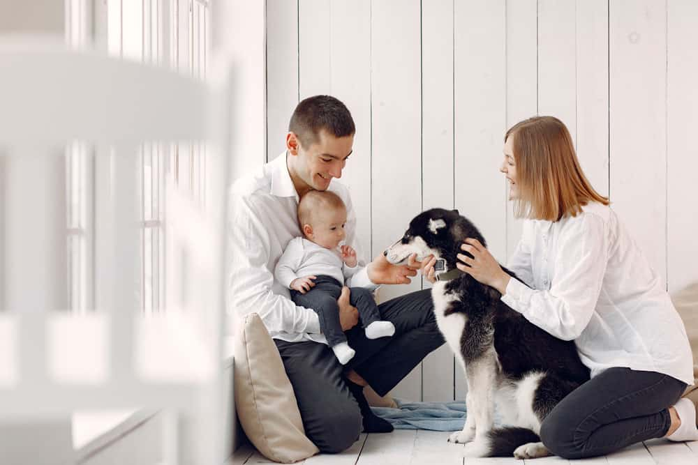 beautiful-family-spend-time-bedroom-with-dog