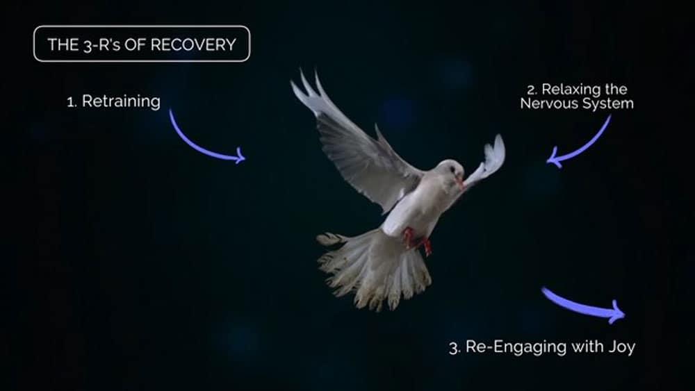 gupta-program-dove-1